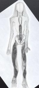 Skeletal II